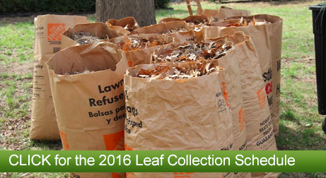 2016-leaf-collection.png